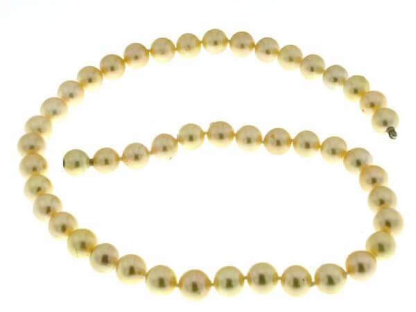 Akoya Perlkette 8-8,5mm cremefarben