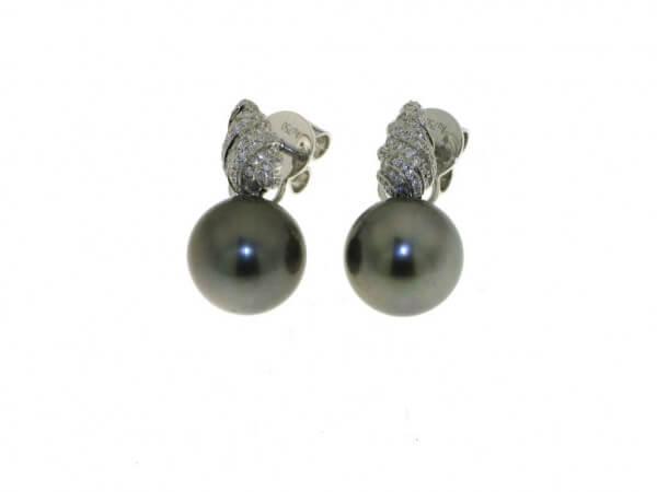 Ohrringe mit Tahiti Perle 10- 11 mm